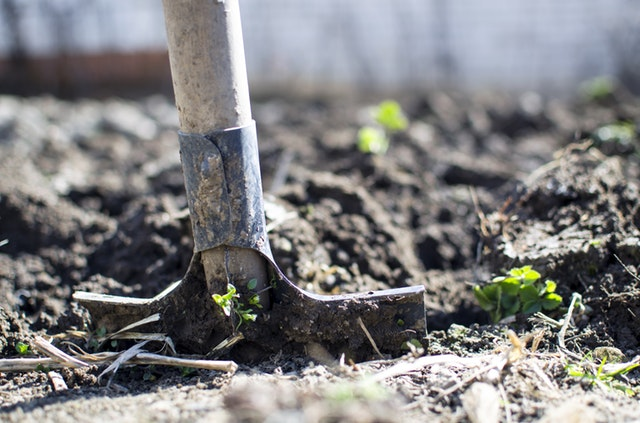 How to pack your gardening tools