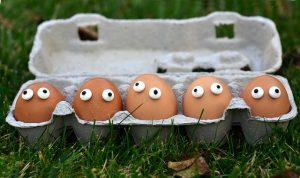 Eggs in carrton