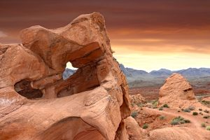 When moving to Las Vegas you will be able to visit the desert and the valley of fire